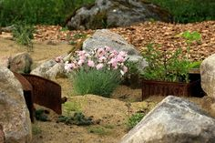 Rustic treasures in garden
