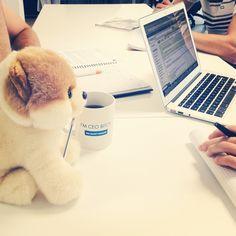 #Boo s'incruste aux réunions !