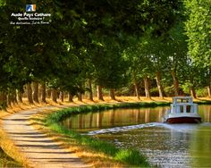 Canal du midi, France. This is an amazing area of France. Join us in September on our iconic bike barge trip. See our website for all the details...