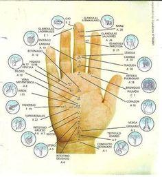Resultado de imagen para acupuntura puntos