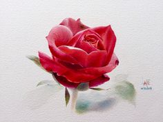 Watercolor without Drawing by LAFE