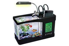 25 Creative USB Gadgets For Your Desktop Aquariums Super, Amazing Aquariums, Tanked Aquariums, Fish Aquariums, Hammacher Schlemmer, Usb Gadgets, Cool Gadgets, Office Gadgets, Desktop Gadgets