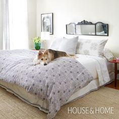 Fresh Global Style | #Bedroom | Photographer: Virginia Macdonald | Stylist: Beth Poulter | #interiordesign #homedecor #bedding #mirror #decorating #dogsofpinterest
