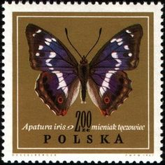 Stamp: Butterfly (Poland) (Butterflies In Natural Colors)