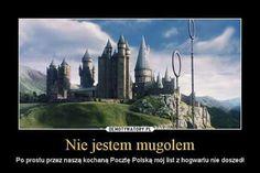 Memy z HP # Losowo # amreading # books # wattpad Harry Potter Marauders, Harry Potter Film, Harry Potter Love, Harry Potter Memes, The Marauders, Slytherin, Hogwarts, Best Memes, Funny Memes