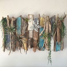 女性で、2LDK、家族住まいの毎日の暮らしを楽しむ/沢山のいいねとフォローをありがとう/西海岸インテリアに憧れ中/グリーンのある暮らし…などについてのインテリア実例を紹介。「本日のRoomClipmagにこちらのスノコと流木を使った壁飾りを載せていただきました(*´艸`*) 今回は100均のスノコを土台にしています、詳しく作りかたも載っているので良かったら参考にしてね(*´︶`*)❤ ケイヨーD2で広告の品になってたエアプランツのシルシナータとベイレイが新しく加わりました、固定していないのて気分で配置を変える事も出来ますよ(*бUб)ウフッ♬ 」(この写真は 2016-09-01 10:05:56 に共有されました)