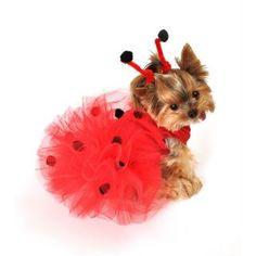Lady Bug Dog Tutu