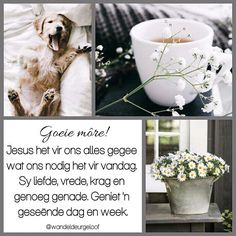 Good Morning Messages, Good Morning Wishes, Lekker Dag, Evening Greetings, Afrikaanse Quotes, Goeie Nag, Goeie More, More Images, Special Quotes