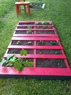 Recycle and Re-purpose - Pallet garden.