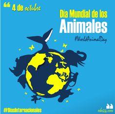 4 de octubre – Día Mundial de los Animales #DíasInternacionales