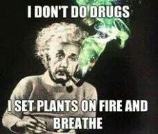 Well cannabis tutorials has every how to guide for cannabis you could ever ask for. Weed Memes, Weed Humor, Stoner Humor, Funny Quotes, Funny Memes, Jokes, Hilarious, Funny Art, Funny Signs
