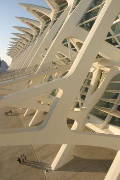 Museo de las Ciencias Príncipe Felipe. Ciudad de las Artes y las Ciencias. Valencia