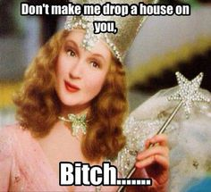 Homeschool, homeschooled, meme, Glenda the good witch Pin Ups Vintage, Vintage Art, Princessdiana1209, Haha, Funny Quotes, Funny Memes, It's Funny, Quotable Quotes, Sassy Quotes