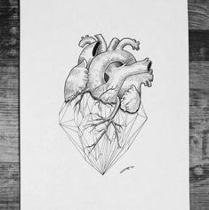 Ideas for tattoo geometric heart sleeve Anatomical Heart Drawing, Human Heart Drawing, Human Heart Tattoo, Dog Tattoos, Animal Tattoos, Tatoos, Geometric Tattoo Nature, Geometric Tattoos, Drawing Sketches