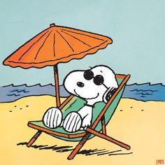Summertime with Snoopy at the beach. Snoopy Love, Snoopy E Woodstock, Charlie Brown Snoopy, Snoopy Images, Snoopy Pictures, Peanuts Cartoon, Peanuts Snoopy, Peanuts Characters, Cartoon Characters