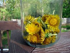 I've been eating my dandelions (from my chemical-free yard!) in salads lately, but wanted another fun way to use them. I saw some beautiful wild violet and dandelion lemonade that I also want to tr. Dandelion Uses, Dandelion Recipes, Dandelion Flower, Healing Herbs, Medicinal Plants, Natural Healing, Edible Plants, Edible Flowers, Garden Animals