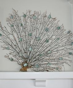 sea fan .....beautiful fan need to loose the added shells ! Not necessary, beautiful all by itself !