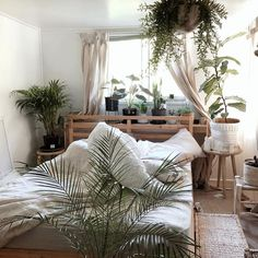 a jungle for a bedroom
