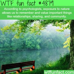 Nature -   WTF fun facts