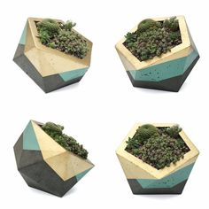 Extra Large Icosahedron Concrete Planter - Gold & Sage (with or without drainage…