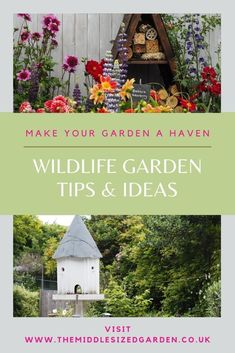 Wildlife gardening ideas and tips from experts. Turn your garden into a haven! #gardening #garden #backyard #middlesizedgarden Colorful Garden, Made Goods, Things To Think About, Wildlife, Backyard, Colour, Outdoor Decor, Yard, Color