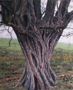 Tree Trunk by Alfred Tucker