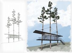 Modern treehouse design. Google Sketchup Rendering