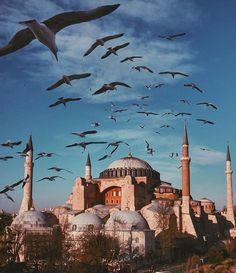 Turkey Travel Destinations Honeymoon Backpack Backpacking Vacation Budget Off the Beaten Path Wanderlust Visit Istanbul, Istanbul City, Istanbul Travel, Aya Sophia, Hagia Sophia Istanbul, Beautiful Mosques, Turkey Travel, Historical Sites, Vacation Trips