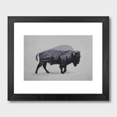 the american bison art print