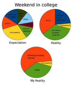 Every weekend: | College Explained Perfectly In Pie Charts