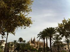 Palma de Mallorca. Places To Travel, Places Ive Been, Clouds, Celestial, Sunset, Outdoor, Palms, Majorca, Outdoors