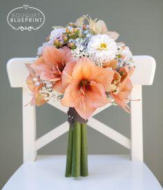 1000 images about amazing amaryllis on pinterest for Bouquet amaryllis