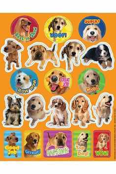 Eureka Motivational Dog Stickers Paper Magic Group 655201