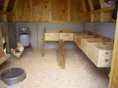 How to Build A Chicken Coop in 4 Easy Steps | A List Of Chicken Coop Ideas, Designs, And Practical Information You Will Need To Determine What Kind Of Chicken Coop You Should Have by Pioneer Settler at pioneersettler.co...