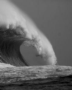 surf | Curl