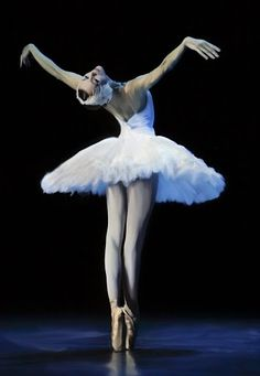This is Ulyana Lopatkina - I can not tell if this is a photo or a piece of art. Would make a nice painting though...