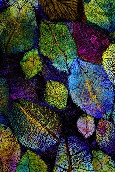 Textile Art 435582595210558338 - Lesley Richmond is a textile artist inspired by natural forms and textures. She works with textile processes to simulate organic surfaces. Source by karapnarkurt Texture, Leaf Art, Patterns In Nature, Fabric Art, Art, Abstract, Color, Beautiful Art, Fiber Art