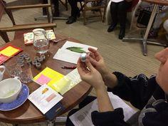 Workshop - výroba prírodnej kozmetiky