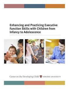 Harvard university guide to executive functioning 6months+