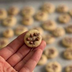 Mini Chocolate Chip Cookies that are so small, you could eat dozens of them without feeling guilty! Crisp and crunchy, they're perfect for little people and can even be used as an icecream topping.