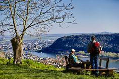 Reiseplaza: Herbstspaziergang am Rhein