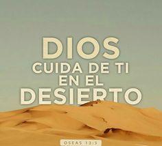 Dios cuida de ti en el desierto. Os13.5