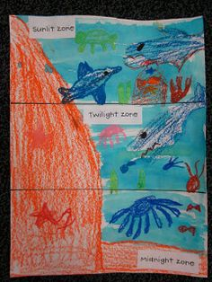 layers of the ocean activities