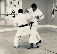 70 best wado ryu karate images martial arts wado ryu karate rh pinterest com