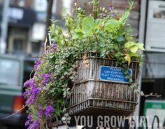 planter_cart