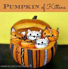 Adorable and easy tutorial!  #Pumpkin Full Of #Kittens #Tutorial #halloween  ::  #sewlicioushomedecor.com