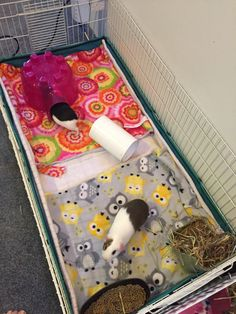 The Easiest Way To Do Fleece Bedding – Charlie & The Pips