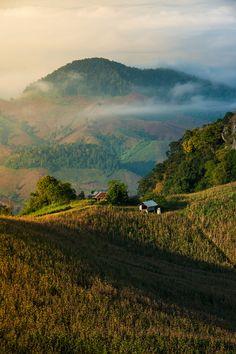 "wondrousworld: ""Sri Nan National Park, Na Noi, Nan, Thailand by Jakrapong Sombatwattanangkool """