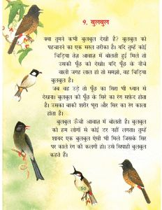 NCERT/CBSE class 2 Hindi book Rimjhim English Stories For Kids, Funny Stories For Kids, Moral Stories For Kids, English Story, Kids Story Books, Best Poems For Kids, Rhyming Poems For Kids, Hindi Poems For Kids, Jokes In Hindi