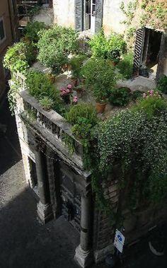 Rooftop garden.. Portoghesi Rome, Italy, Lazio .